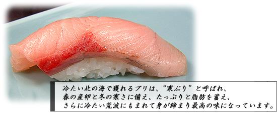 SUME_J0204[1].jpg